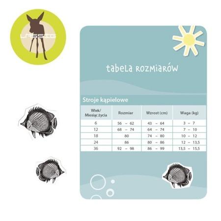 Lassig Majteczki do pływania z wkładką chłonną Ice Cream UV 50+ 12m-cy